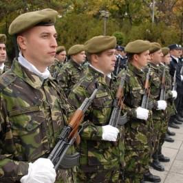 ziua armatei (71)