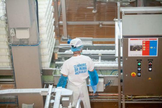 Angajari in perioada pandemiei la FrieslandCampina Romania