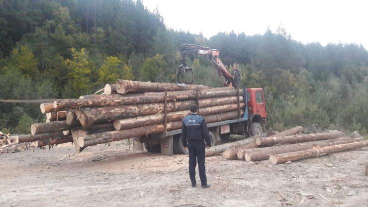 Controale pentru prevenirea infracțiunilor silvice la Cluj