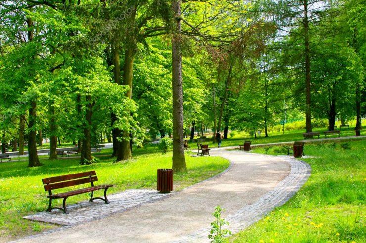 """""""Clujul verde"""". Unde se fac parcuri și când"""
