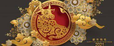 HOROSCOP CHINEZESC 2021. Anul bivolului alb de metal. Previziuni pentru fiecare zodie
