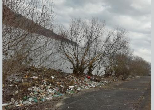 70 de sesizări pentru eliberarea Someșului de gunoi, aruncat ilegal. Garda de Mediu începe curățenia